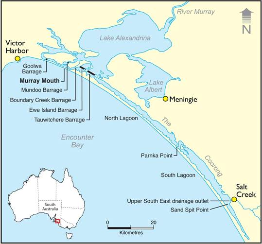 Map showing location of the Coorong, Lower Lakes, Murray Mouth, and Barrages